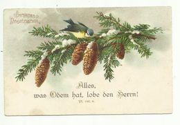 C. Klein * Catharina Klein * Unsign. * S.J.D. * Vogel * Tannenzweig * Neujahr * 1927 - Klein, Catharina