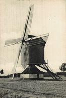 Molen HORZELEND - Retie   MOULIN A VENT WINDMOLEN WINDMILL  ANTWERPEN  ANVERS Bélgica Belgique - Retie