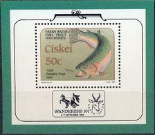 CISKEI - MNH - FAUNA - FISH -  MI.NO.BL 4 - CV = 5 € - Ciskei