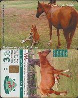 128/ Jordan; Horses - Jordanien