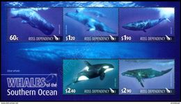 New Zealand (Ross Dependency) 2010: Foglietto Balene / Whales S/S ** - Ross Dependency (New Zealand)
