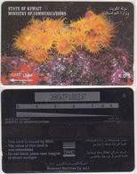 158/ Kuwait; P51. Anemones, CN 39KWTP - Kuwait