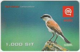 SLOVENIA B-014 Prepaid Mobi - Animal, Bird, Red-backed Shrike - Val. 31/12/2008 - Used - Slovénie