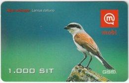 SLOVENIA B-017 Prepaid Mobi - Animal, Bird, Red-backed Shrike - Val. 31/12/2007 - Used - Slovénie