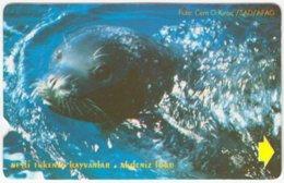 TURKEY B-384 Magnetic Telekom - Animal, Seal - Used - Türkei
