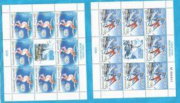 2006 112-13   MONTENEGRO  CRNA GORA  SPORT OLYMPIADI WINTERSPIELE  NEVER HINGED - Winter 2006: Torino