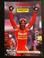 Mario Cipollini - Saeco - 2000 - Carte / Card - Cyclists - Cyclisme - Ciclismo -wielrennen - Cycling