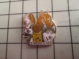115d Pin's Pins / Rare & Belle Qualité !!! THEME ANIMAUX / CHIENS SC RHONE ALPES - Animaux