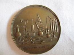 Italia: Medaglia Esposizione Internazionale Di Medicina E Di Igiene - Roma 1894 - Professionals/Firms