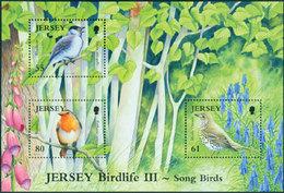 JERSEY Bloc Oiseaux III 2009 (3TP) Neuf ** MNH - Jersey