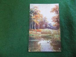 VINTAGE UK ENGLAND: NORFOLK Broads Fritton Decoy Art Colour Tuck Oilette - Otros