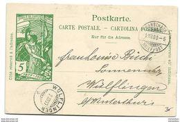 28 - 40 - Entier Postal UPU Avec Cachets à Date De Rorschach Et Wülfingen 1900 - Entiers Postaux