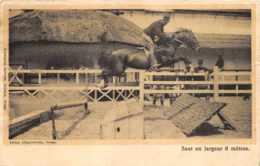 Ypres - Ecole D'Eqquitation - Saut En Largeur 6 Mètres - Ieper