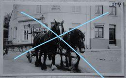 Photox4 UCCLE UKKEL Quartier Saint Job Attelage De Brasseur Brouwerij Bière Bier Cuvelles à Chaux 1939 - Lieux