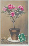 L100G317 - Pot De Plante Fleurie - Croissant N°3854 - Autres