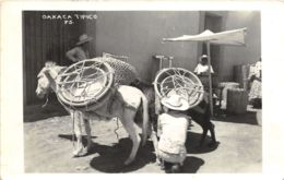 Oaxaca Tipico - Mexico