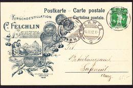1912 Reklamenpostkarte Kirsch Destillation, Felchlin, Schwyz Nach Safenwil. - Cartas