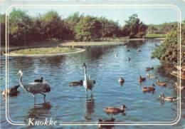 Knocke-Zoute - Zwin - Knokke