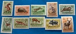 Hungary, 1953, Animals, Fauna, Wildlife, MNH, Michel 1285-1294, Set Mnh - Nuovi