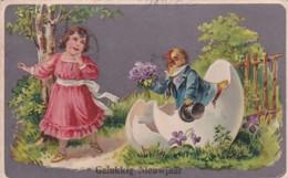 2605101 Gelukkig Nieuwjaar, Kip Geeft Meisje Bloemen Aan.(reliëf Kaart) (kleine Vouwen In De Hoeken) - Nouvel An