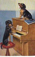 CP Fantaisie - Chiens Jouant Du Piano Et Chantant - - Cani