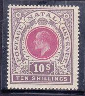 Natal 1902  Re Edward VII. 10.s  Gibbons N° 141 MLH* - Natal (1857-1909)