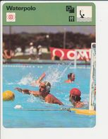 Waterpolo Water Polo Sport 1FICH-DIV5 - Sports