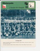 Waterpolo équipe De Hongrie 1977 Magyar En Photo Gyarmati Et Farago Water Polo Sport 1FICH-DIV5 - Sports