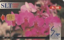 PHONE CARD SRI LANKA (E61.11.3 - Sri Lanka (Ceylon)