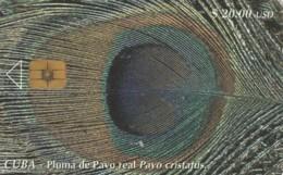 PHONE CARD CUBA (E61.23.3 - Cuba