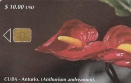 PHONE CARD CUBA (E61.22.6 - Cuba