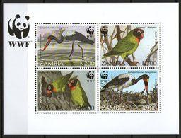 1996 Sambia/Zambia WWF Vögel-Birds Mi. Block 20 **/MNH - W.W.F.