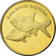 Monnaie, Congo Democratic Republic, 5 Rupees, 2019, Maluku - Harlequin Rasbora - Kongo (Dem. Republik 1998)