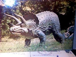 BUSSOLENGO PASTRENGO  PARDO  DEI  DINOSAURI  TRICERATOPO   N1980 HQ9680 - Verona
