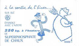 Buvard - à La Sortie De L'hiver ....sur Blé épandez Avec L'Azote 250 Kg. à L'hectare De SUPERPHOSPHATE DE CHAUX - Agriculture