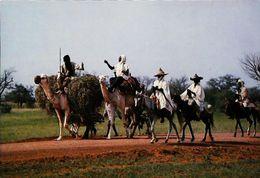 Niger Sur La Route De Filingué -jour De Marché - Niger