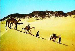 Niger Nomades Dans L'erg Brusset Kori De Tchin Taborak - Niger