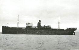 188 CLICHE BATEAU  - PREFIXE S.S. - LE FERNANDO ? DE 1906 - FORMAT CPA N° 0188 - Barche