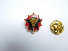 Beau Pin's , Armée Militaire ,  Régiment Génie - Militaria