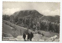 XW 2893 Pescopennataro (Isernia) - Abetaia - Panorama Invernale / Viaggiata 1957 - Autres Villes