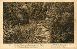 TAHITI - In The Famous Gorges Near Papeete - Tahiti