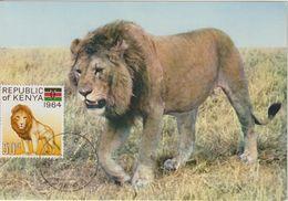 Kenya Carte Maximum 1964 Lion 17 - Kenia (1963-...)
