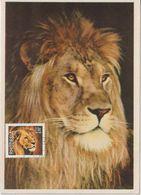 Rhodésie Carte Maximum 1978 Lion 306 - Africa (Varia)