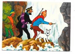 Tintin , Haddock Et Zorrino ; La Chute D'eau , Datée Du 5/4/73 - Stripverhalen