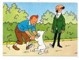 Les Aventures De Tintin : Tournesol Et Milou  - écrite En 1977 - Comics