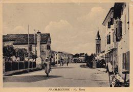 Cartolina Di Pramaggiore ( Venezia ) Via Roma - Venezia (Venice)