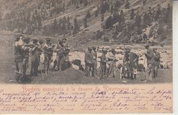 Bergers Espagnols à La Douane De RIOUMAIOUS ( 1600 M )  PRIX FIXE - France