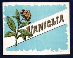 Etichetta - Vaniglia - Etiquettes