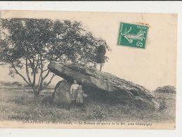 86 CHAMPIGNY LE SEC LE DOLMEN OU PIERRE DE LA BIE PRES CHAMPIGNY CPA BON ETAT - Dolmen & Menhirs