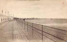 Zeebrugge - Vue Générale Du Môle (Henri Georges) - Zeebrugge